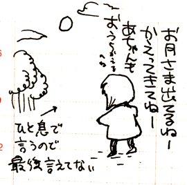 2y4mf.jpg